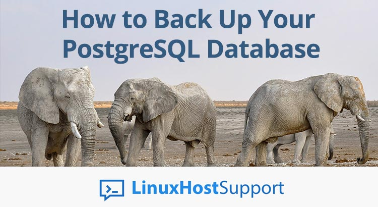 How to Back Up your PostgreSQL database